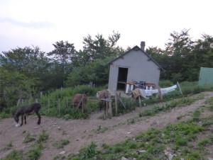 casteruch, le joiur du départ pour la haute montagne